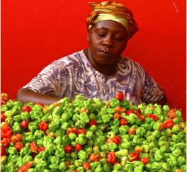african market woman