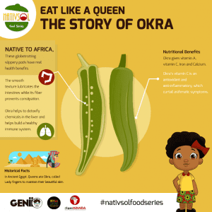nativsol series_okra