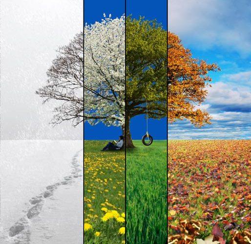 Reflecting through the four se...